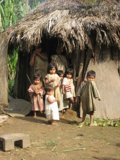 Kogi children Les Indiens Kogis sont les derniers héritiers des Tayronas, l'une des plus grandes sociétés précolombiennes du continent sudaméricain
