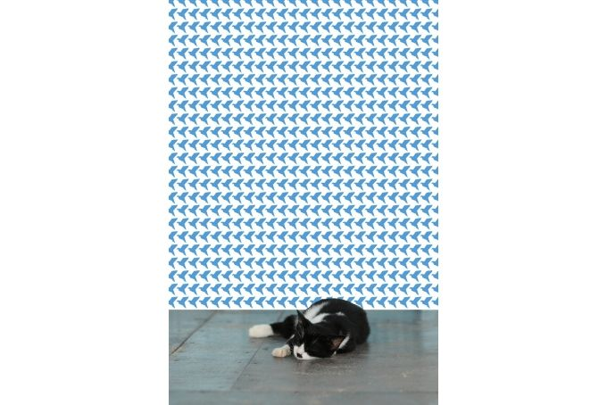 Blue and White Origami Birds Wallpaper by handmade by me on hellopretty.co.za