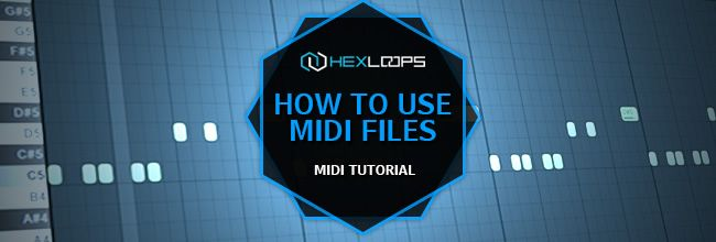 MIDI TUTORIAL http://hexloops.com/how-to-use-midi-files-loops-midi-tutorial