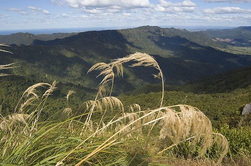 Looking south from the top of Mt te Aroha