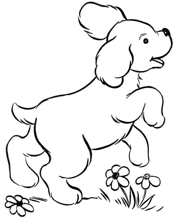 Dogs Dog Playing In The Garden Coloring Page Easy Coloring