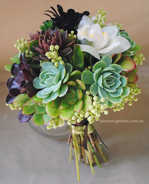 Succulent Bouquet by Rita of Blooming Brides