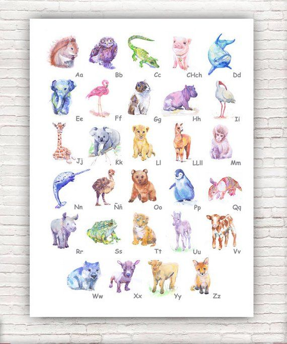 Spanish Alphabet Animal Abc Poster Nursery Decor By Valentina Ra Size Paper 14 8 21cm 5 4 5 8 1 4 A5 With White Bo Abc Print Abc Poster Kid Room Decor