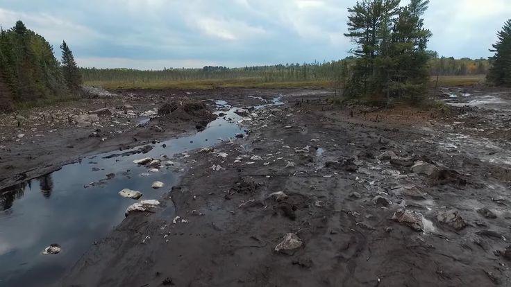VIDÉO : Un barrage de castors de 3m de hauteur et vieux de 7 ans s'est effondré d'un coup, vidant un étang et inondant toute une vallée du Minnesota.