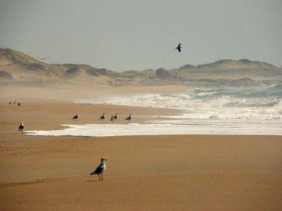 Punta del Diablo, Rocha Uruguay  Portal : Galería de Fotos