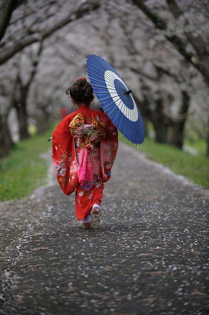 Japanese girl in kimono - ©Kenji2006  www.flickr.com/photos/40181783@N00/13623838095/