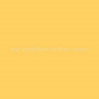 Benjamin Moore Yellow Raincoat