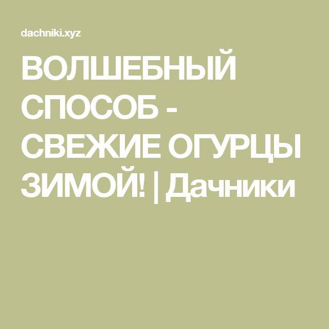 ВОЛШЕБНЫЙ СПОСОБ - СВЕЖИЕ ОГУРЦЫ ЗИМОЙ! | Дачники