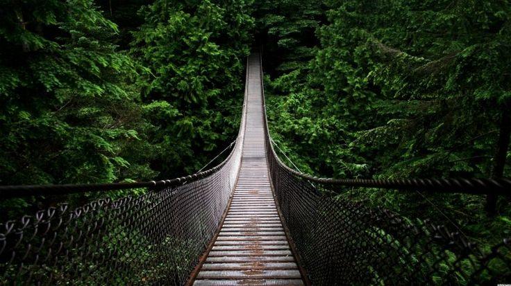 Capilano Suspension Bridge Vancouver Canada Bridge