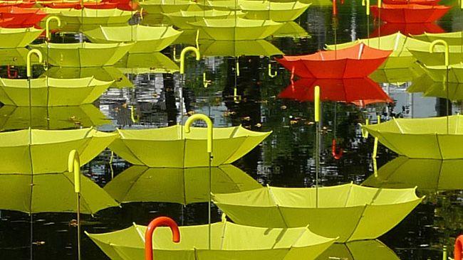 Just Sometimes by Luke Jerram. #rotterdam #outdoorinstallation #waterways #umbrellas #artinstallation #colourful