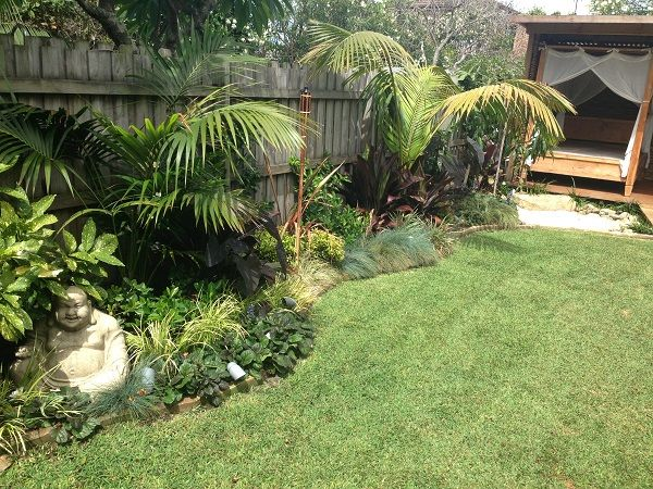 Tropical Garden Ideas Uk 112 best tropical look images on pinterest | tropical plants