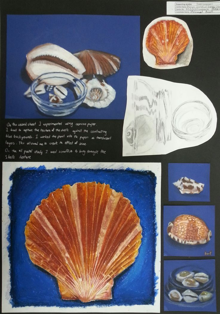Anoof Page 2 comp 1. here Anoof looked at both colour and texture of various shells and used coloured pencil and oil pastel on ablue ground. He also used sgraffito with the oil pastels to add more texture and indentationsto the scallop shell