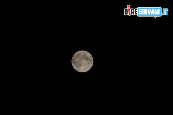 Moon by Elisa Bassani