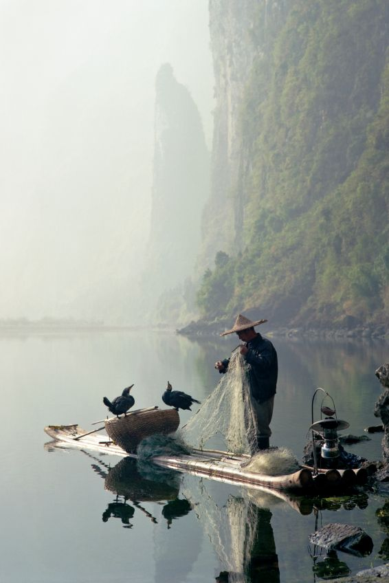 Cormorant fishing on the Li River, Guilin, China.