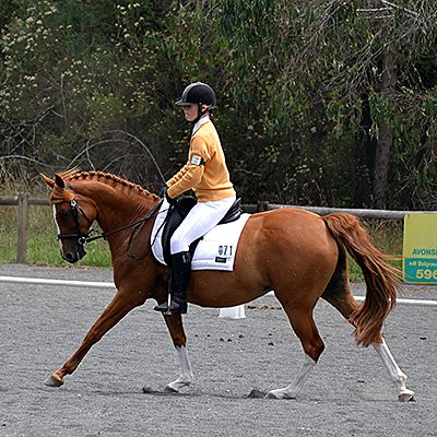 Kenz & Hazy Win Grade 3 Macclesfield Dressage.  Read More: