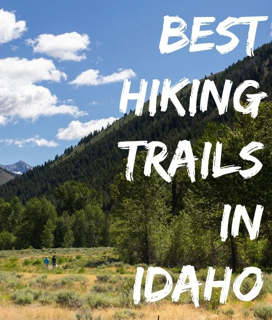 Hiking trails in Idaho. Our favorite is Bald Mountain in Sun Valley