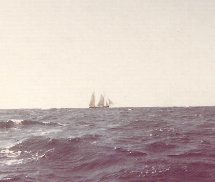 Seychelles Voyage – Homeward Bound - Part 17 - News - Bubblews