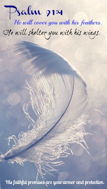 Psalm 91:4 He will cover you with his feathers. He will shelter you with his wings. His faithful promises are your armor and protection. #2015-106Psalmsin106 days.
