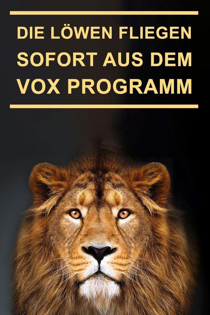 Die Lowen Fliegen Sofort Aus Dem Vox Programm Aus Dem Die Euro Fliegen Lowen Programm Sofort Vox Vox Programm Fliegen