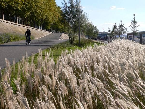 Cycling along the banks of the Rhone River, Lyon, France. Click image for full story and visit the slowottawa.ca boards >> https://www.pinterest.com/slowottawa/