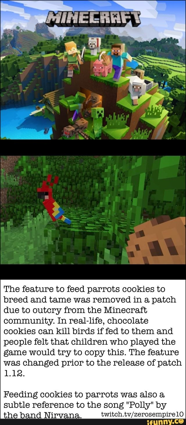 Hiheebhf 1 The Feature To Feed Parrots Cookies To Breed And Tame Was Removed In A Patch Due To Outcry From The Minecraft Community In Real H Fe Chocolate Coo Memes Parrot Science