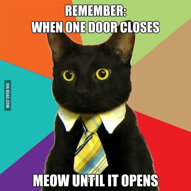 My damn cats all the time. No lie they banged on the door handle until I open the door!:-p
