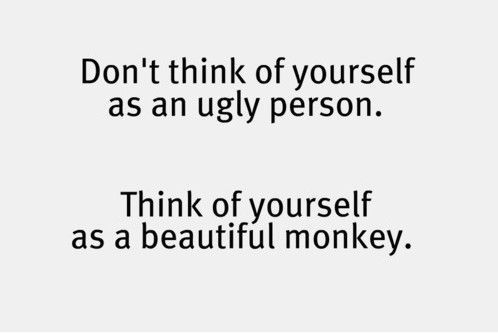 beautiful monkey: Giggle, Quotes, Funny Stuff, Humor, Funnies