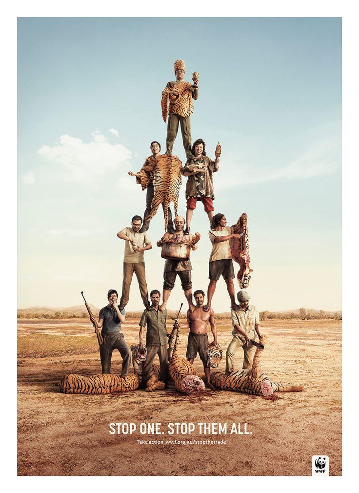 WWF 'Poachers' on Behance