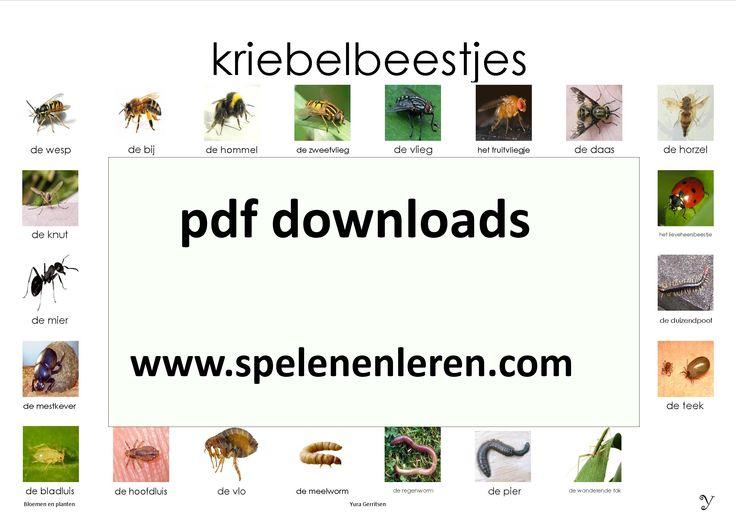 www.spelenenleren.com pdf-downloads