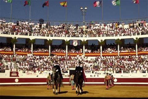 Festival artista en el Centenario de Dax - mundotoro.com