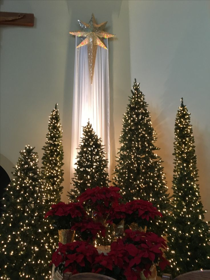 96 best Church Decorating - Advent/Christmas/Epiphany ...