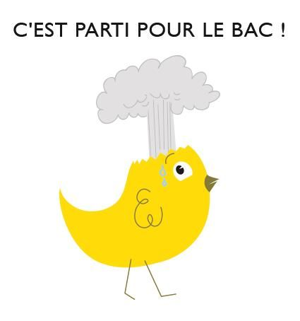 #Bonnechance #Bac #Poussindujour #Poussin http://poussin-communication.fr/