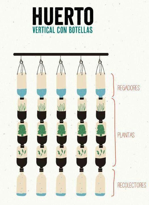 Huerto vertical reutilizando botellas de PET                                                                                                                                                                                 Más