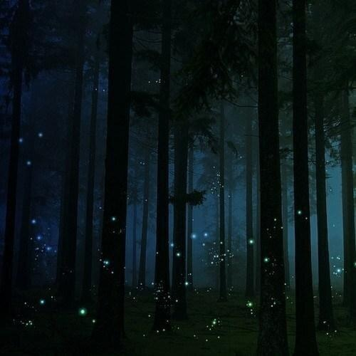 There is nothing like watching fire flies at night time in the summer.