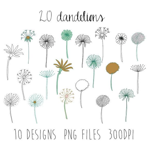 dandelions clipart : flower clipart / doodle clipart / hand sketched clipart / 10 design images / 20 pieces / spring clipart / png files