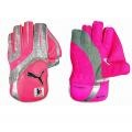$65 - Puma Calibre Reserve Wicketkeeping Gloves 10/11 - PUMA® continues its support of the McGrath Foundation for the fourth consecutive year with the limited edition release of the Pink Calibre Reserve cricket collection. When you walk out onto the crease this summer, make sure you're wearing our pink wicket keeping gloves and showing your support for the McGrath Foundation.