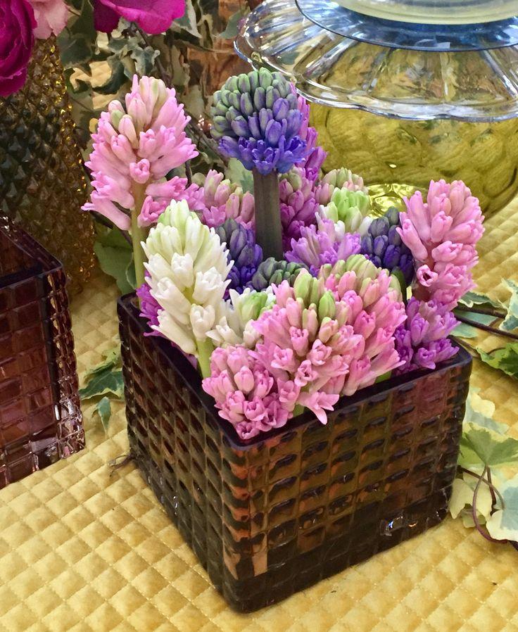 les 91 meilleures images du tableau bulbes sur pinterest arbuste bulbes de printemps et du jardin. Black Bedroom Furniture Sets. Home Design Ideas