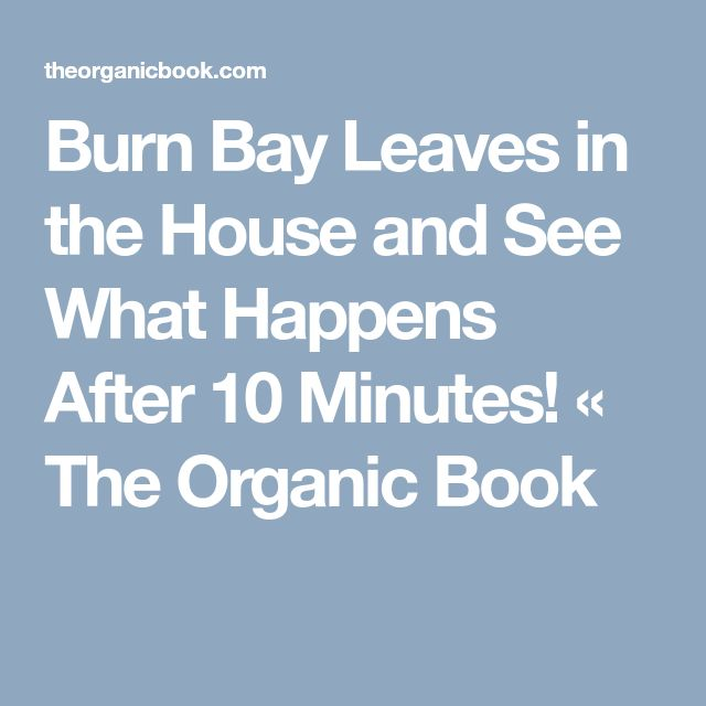 Burn Bay Leaves in the House and See What Happens After 10 Minutes! « The Organic Book