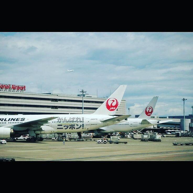 オリンピック始まりましたね がんばれニッポン It's yale for olympic players. #aviation #airplane #hanedaairport #jal #羽田空港