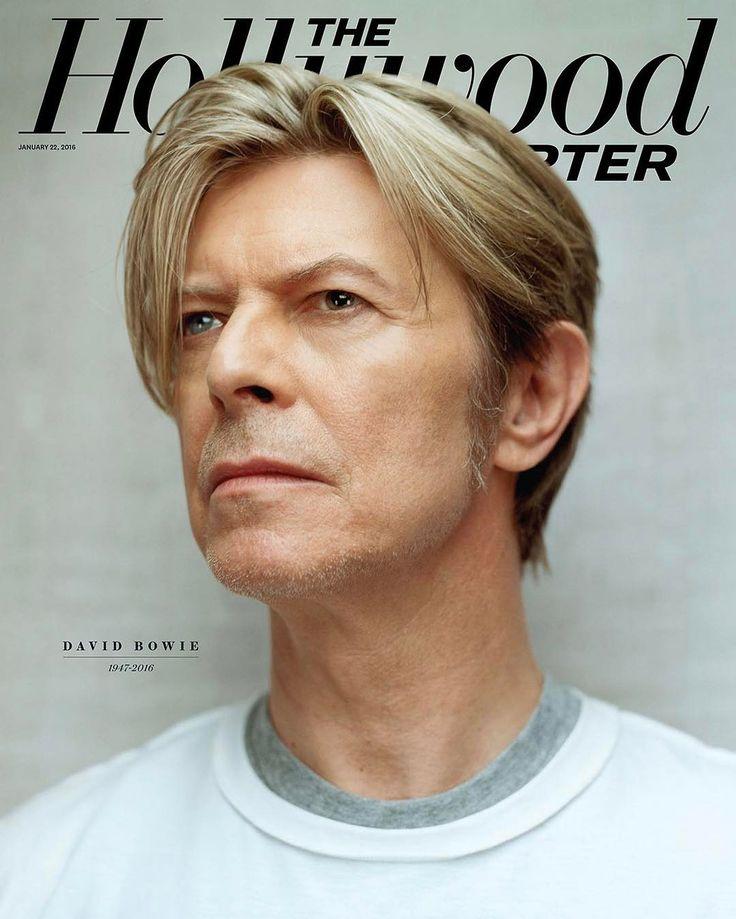 We love David Bowie - Ardan News