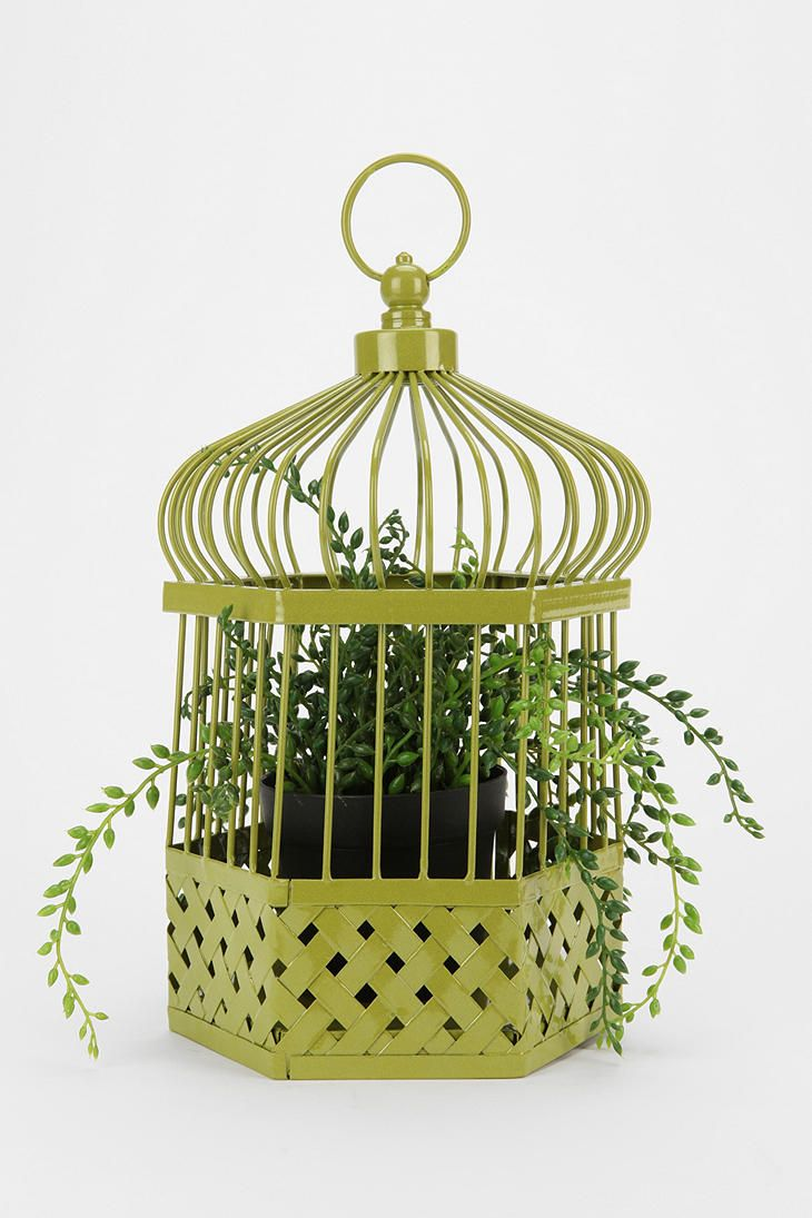 83 best cage oiseaux d cor e images on pinterest birdcage decor bird cage decoration and. Black Bedroom Furniture Sets. Home Design Ideas