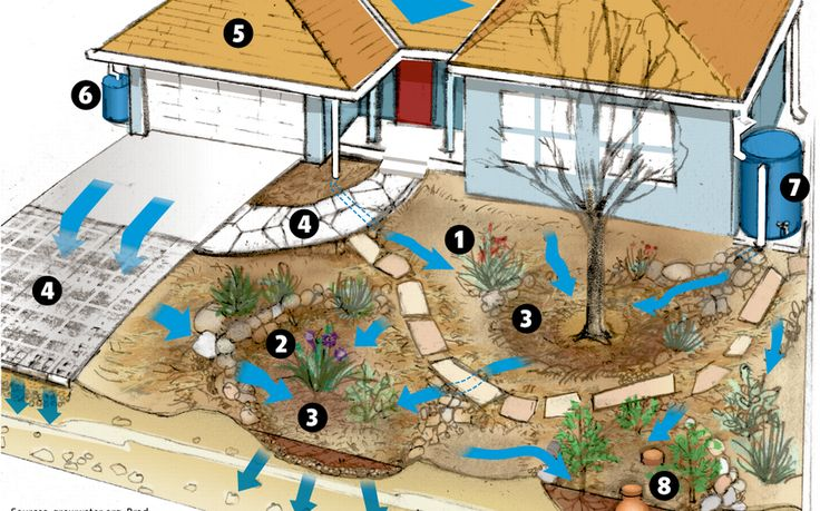 How to harvest rain for your yard                                                                                                                                                                                 More