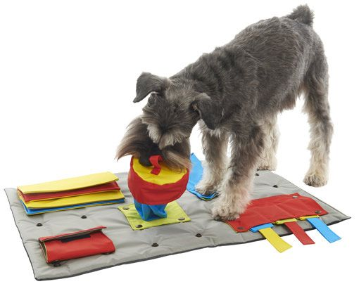 The Buster Activity Mat is an interactive toy designed to challenge dogs and make them think.