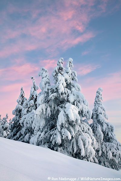 Winter Sunrise, Alaska
