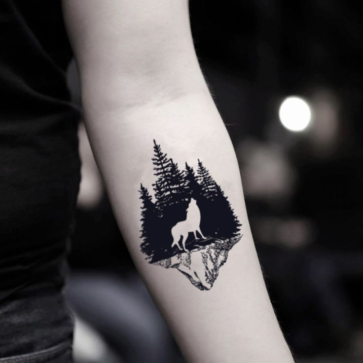 Darkish Night time Bosque Forest Wolf Momentary Tattoo Sticker (Set of two)