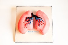Lungen Torte - ein Dankeschön ans Personals des Spitalnotfalls. Hergestellt von FleurDeSucre.ch, Zürich, Schweiz