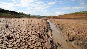 Cinturão VERDE ao longo das Américas não significa plantar ALFACE: Sem MATAS a chuva vai embora ANTA #PRESIDANTA........