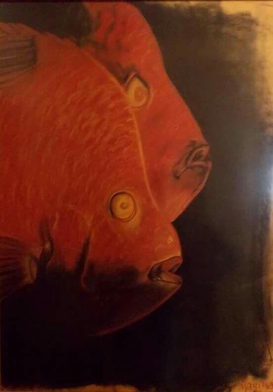 peixes | by mleão