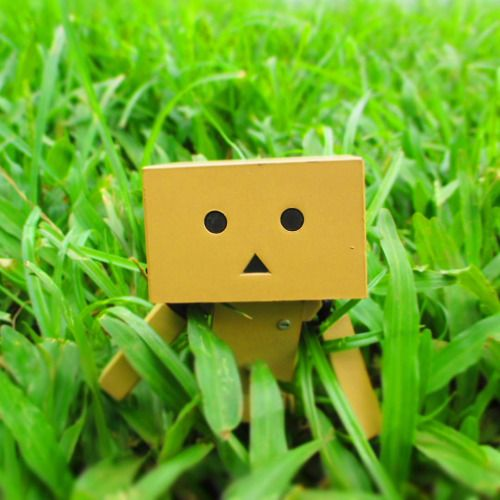 """You may think the grass is greener on the other side. But if you take the time to water your own grass it would be just as green"" — anonymous . . #danbo #danboard #figurine #toygraphy #yotsubato! #green #quote #quotesoftheday #imtoobusyworkingonmyowngrasstonoticeifyoursisgreener"