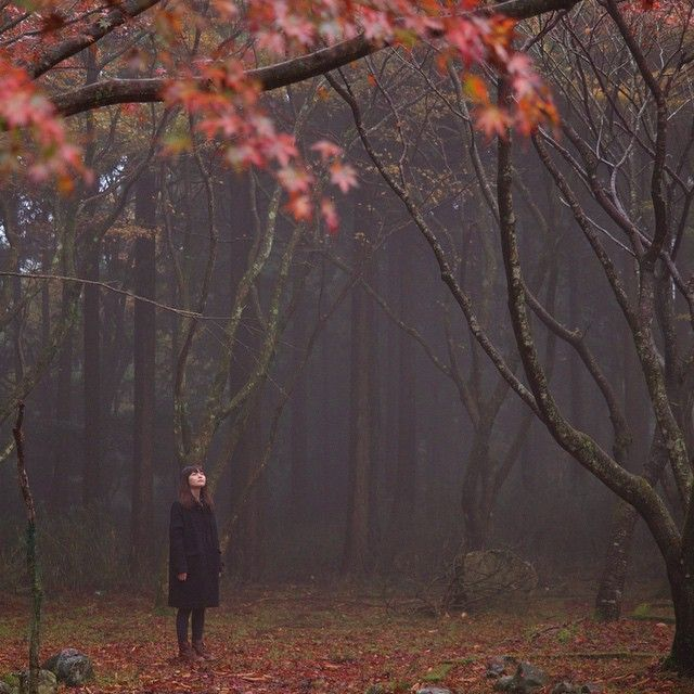 Η εκκωφαντική σιωπή της ψυχής, τα βροντερά δράματα της ζωής, είναι μοναξιές παρελθόντος. Οι στραβές τιμονιές του ''ΕΓΩ'' μας, τεθλασμένες γραμμές μιας αντινόησης...   Μοναδικές στιγμές μιας αθλιότητας. Αγριεμένες μαρτυρίες μιας οντότητας.  Της ζωής λανθασμένες ευθείες. Της ύπαρξης σκοτεινές γωνίες.  Οι κραυγές ονείρων. Ματωμένοι γάμοι δακρύων.  Πέφτουν ακόμα κάτω και σκύβουν. Τον καιρό θέλουν να παρασύρουν.  Στον πονηρών τα κρεβάτια. Μοιρολατρίες και παρακάλια.  Στων εχθρών γραμμένα τα…